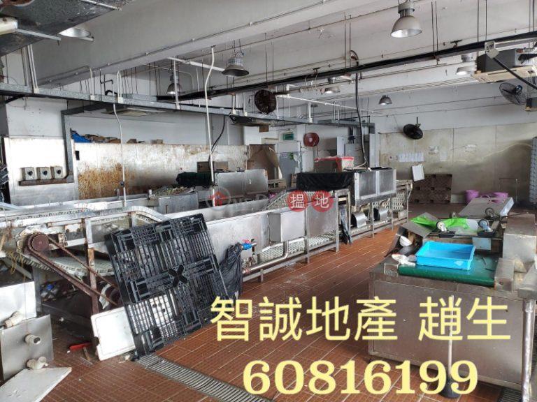 葵涌 - 宏達工業中心 出租 洗碗工場